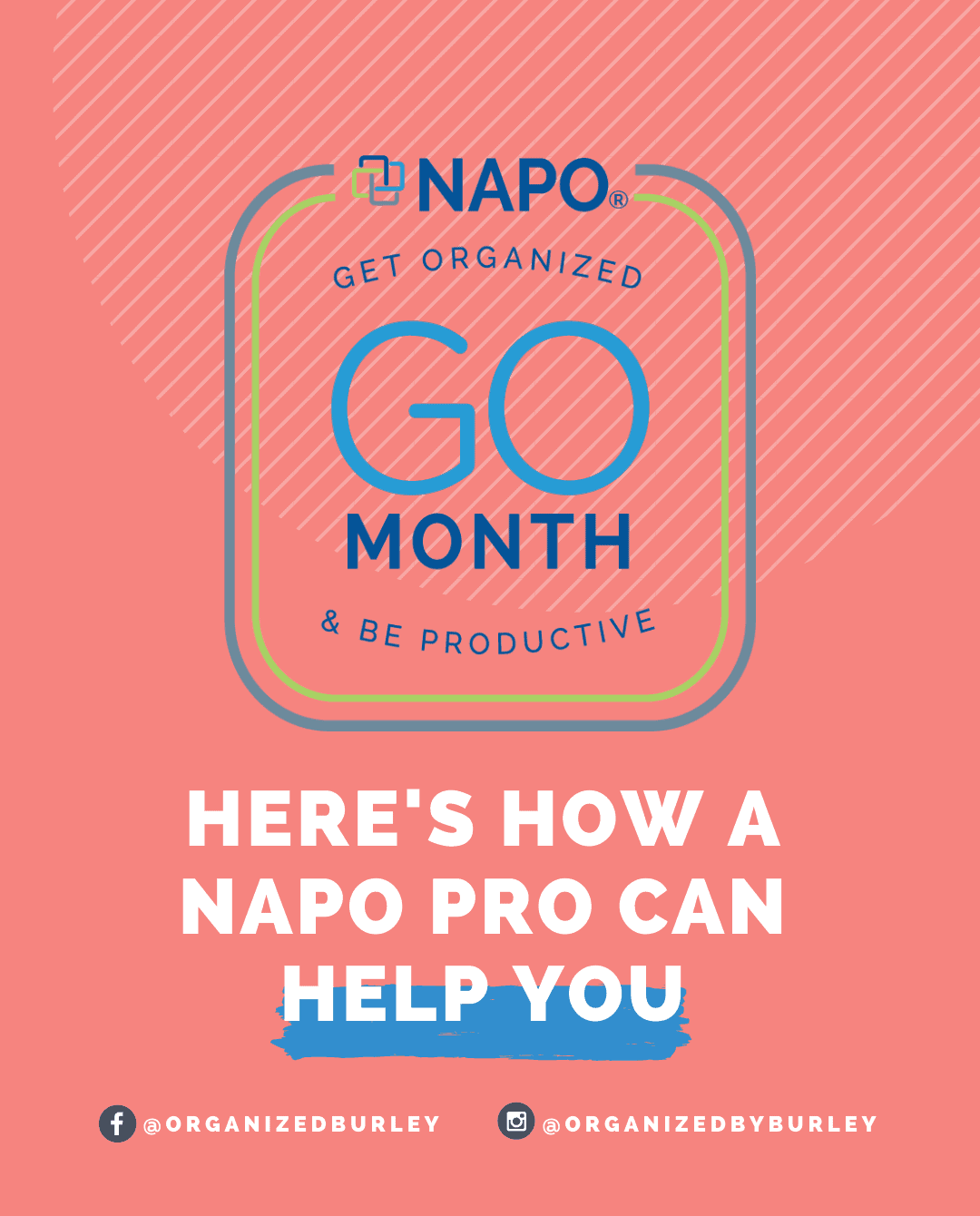 Here's How A NAPO Pro Can Help You